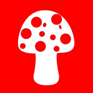 Первая неотложная доврачебная помощь при отравлении ядовитыми грибами
