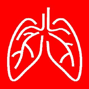 Первая медицинская помощь при отеке легких. Алгоритм оказания лечение на догоспитальном этапе