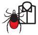 насекомые цепляются к белой одежде